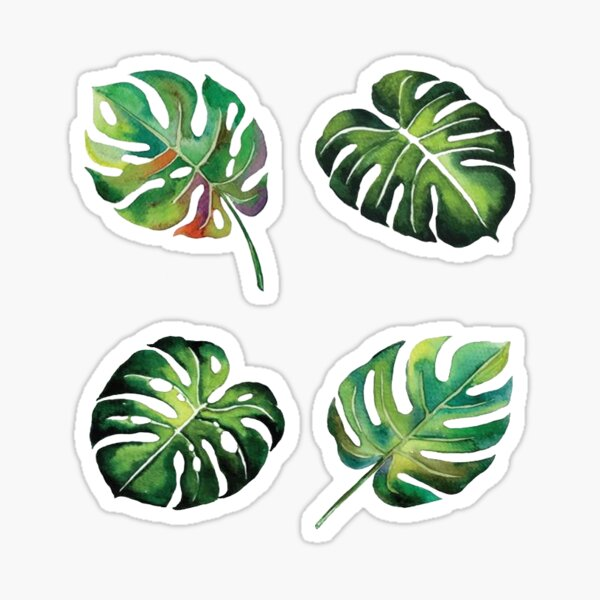 Palm Leaves Sticker