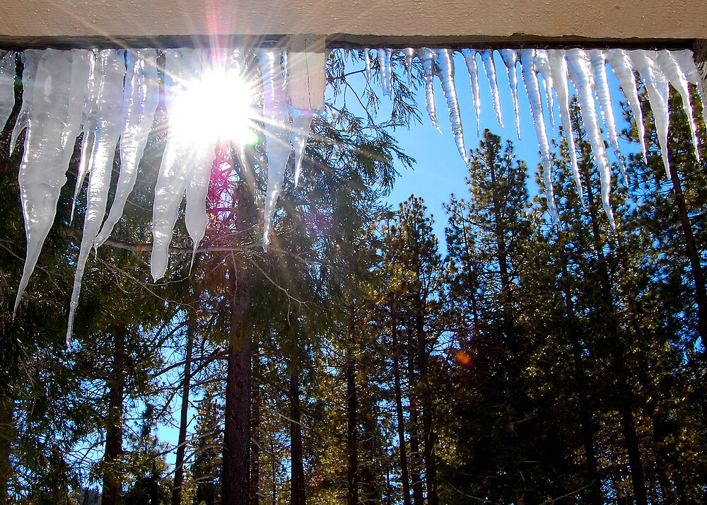 Sunfire through Icicles by Cynde143