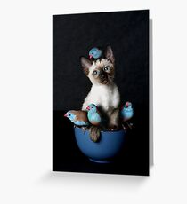 Bird Puss Greeting Card