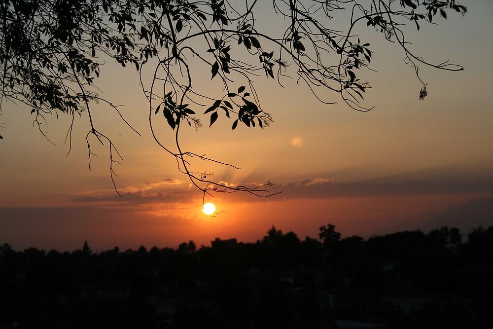 California sunset by Liz Wear