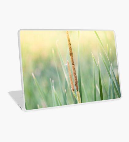 Cattail Laptop Skin