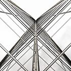 Glass Lines by John Velocci