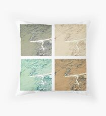 Summer day fly  Throw Pillow