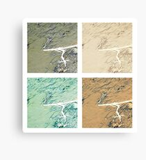 Summer day fly  Canvas Print
