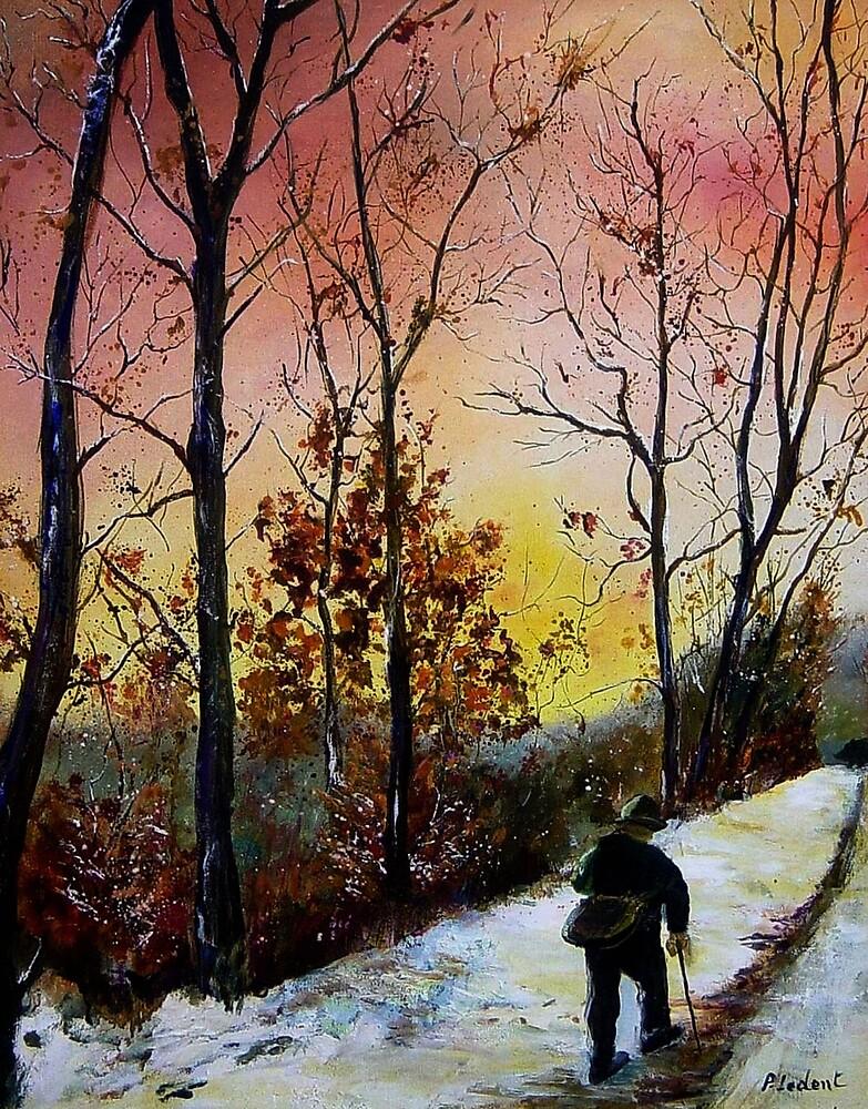 Walking alone  by calimero