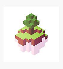 Minecraft Simple Floating Island - Isometric Photographic Print