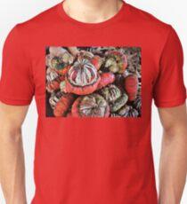 Turban Squash T-Shirt