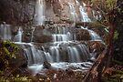 William Falls by Travis Easton