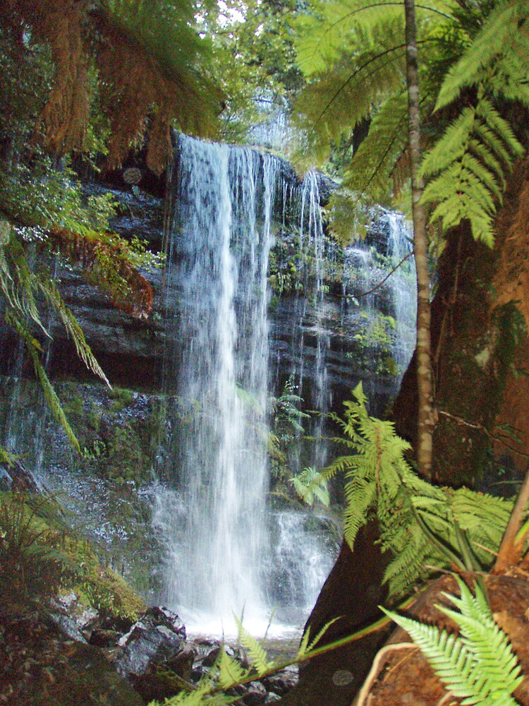 part of Russell Falls Tasmania by gaylene