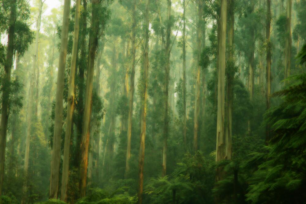 Mystic Mountains - 2 by JenniferW