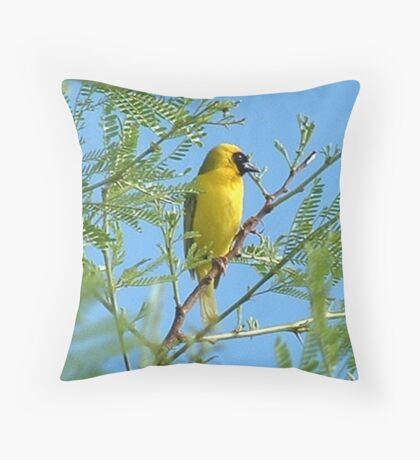 The blossom is spent Throw Pillow