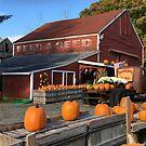 Portrait of a Massachusetts Farm by Patricia Lupien