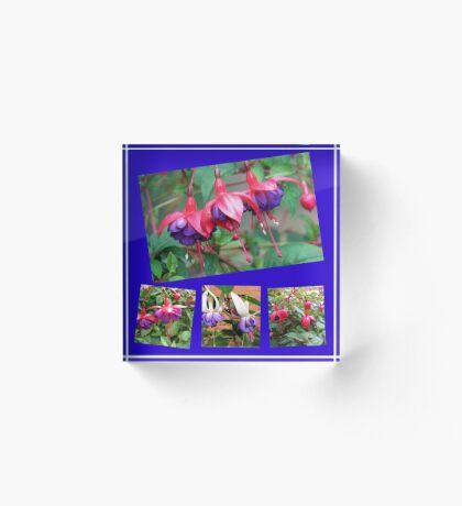 Tanzen Fuchsia Belles - Sommer-Blumen-Collage Acrylblock
