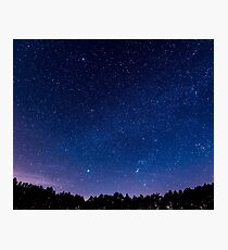 Stars, Forest, Night Photographic Print
