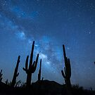 Milky Way Skyscape in the Desert Full with Succulents by Neli Dimitrova