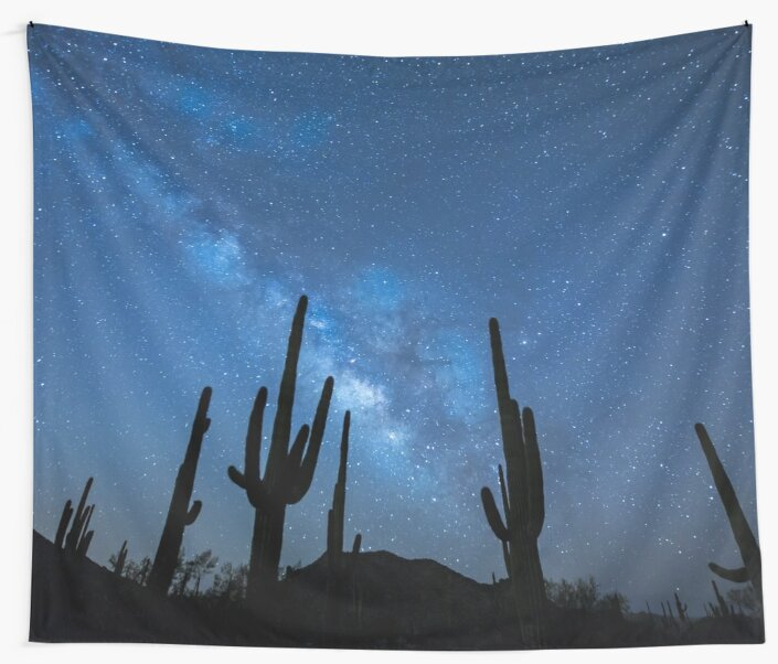 Milky Way Skyscape in the Desert Full with Succulents by cadinera