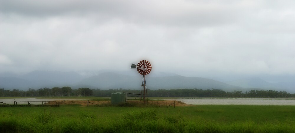 The flood plains - After the Deluge - Whitsundays  by JenniferW