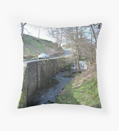 Stonegate Weir in early spring Throw Pillow