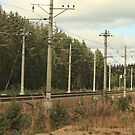 electrified railway going into the distance by mrivserg