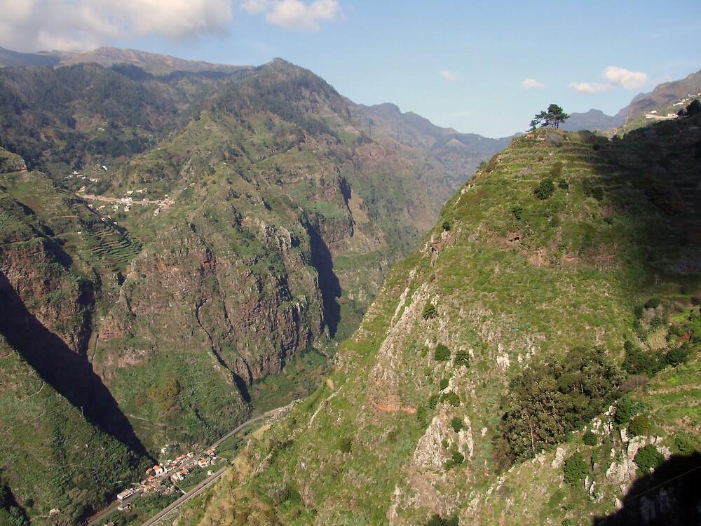 Madeira mountains by John Quinn