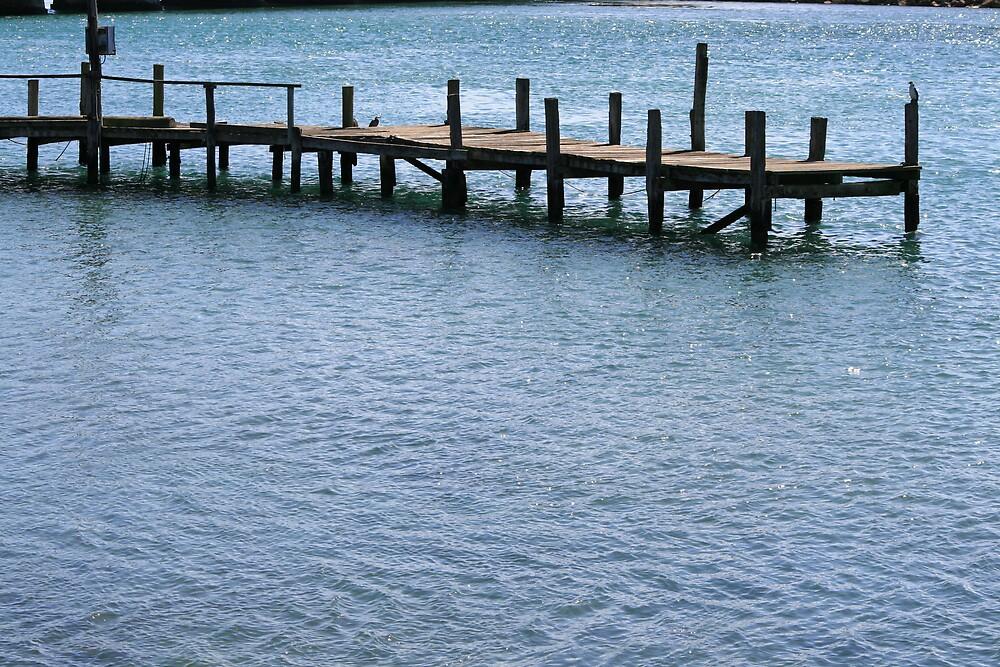 Riverton Pier Invercargill by DRWilliams