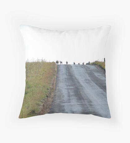 Thou Shall Not Pass, Baaaaa! Throw Pillow