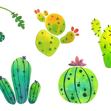 Watercolor Cacti (Cactus Pattern) by beaglecakes