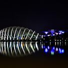 Gardens by the Bay by Peter Doré