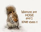 Love Walnuts! by Jane-in-Colour