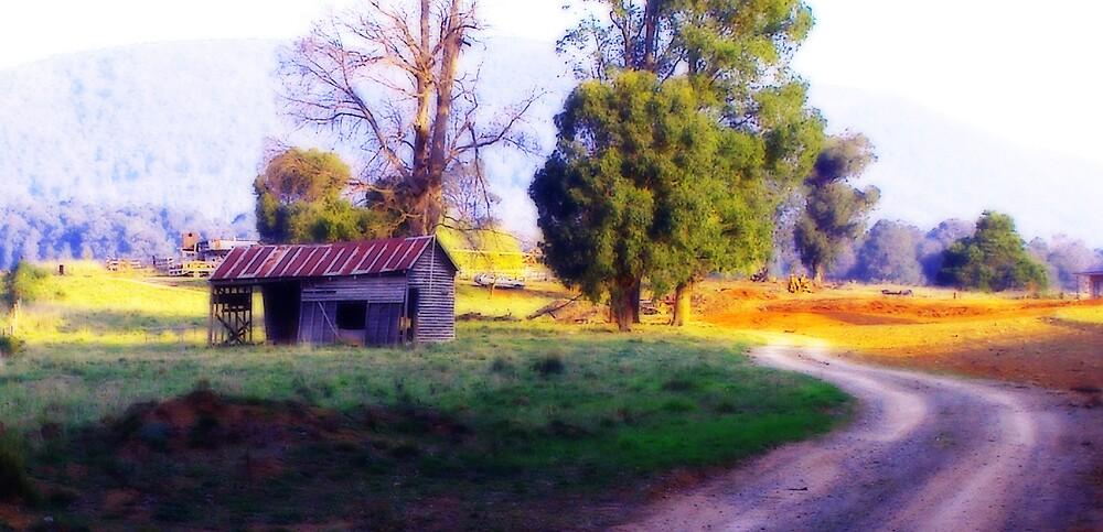 Aussie Shed - Marysville by JenniferW