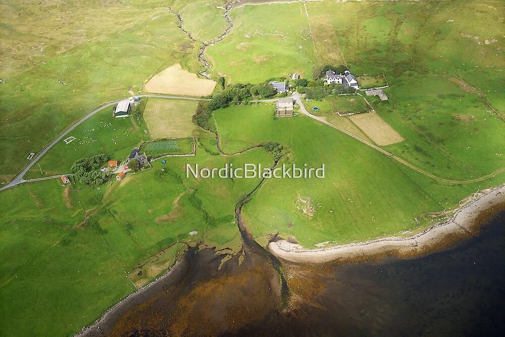 nordic tale from earthsea  by NordicBlackbird