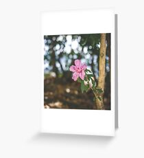 123 - Standing strong Greeting Card