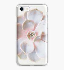 Pink Succulent II iPhone Case/Skin