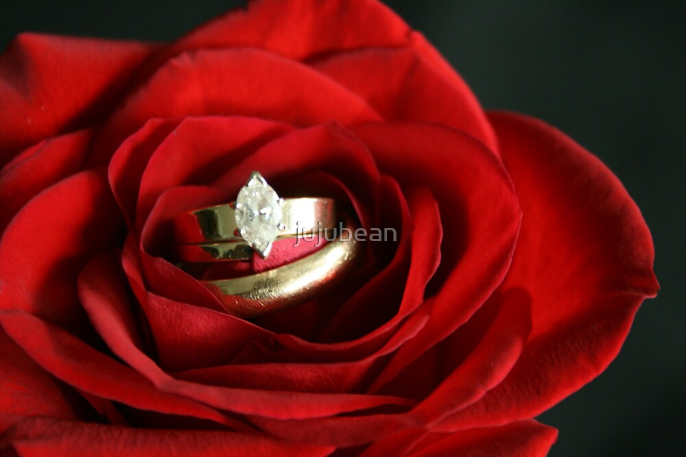 Love is Blooming by jujubean