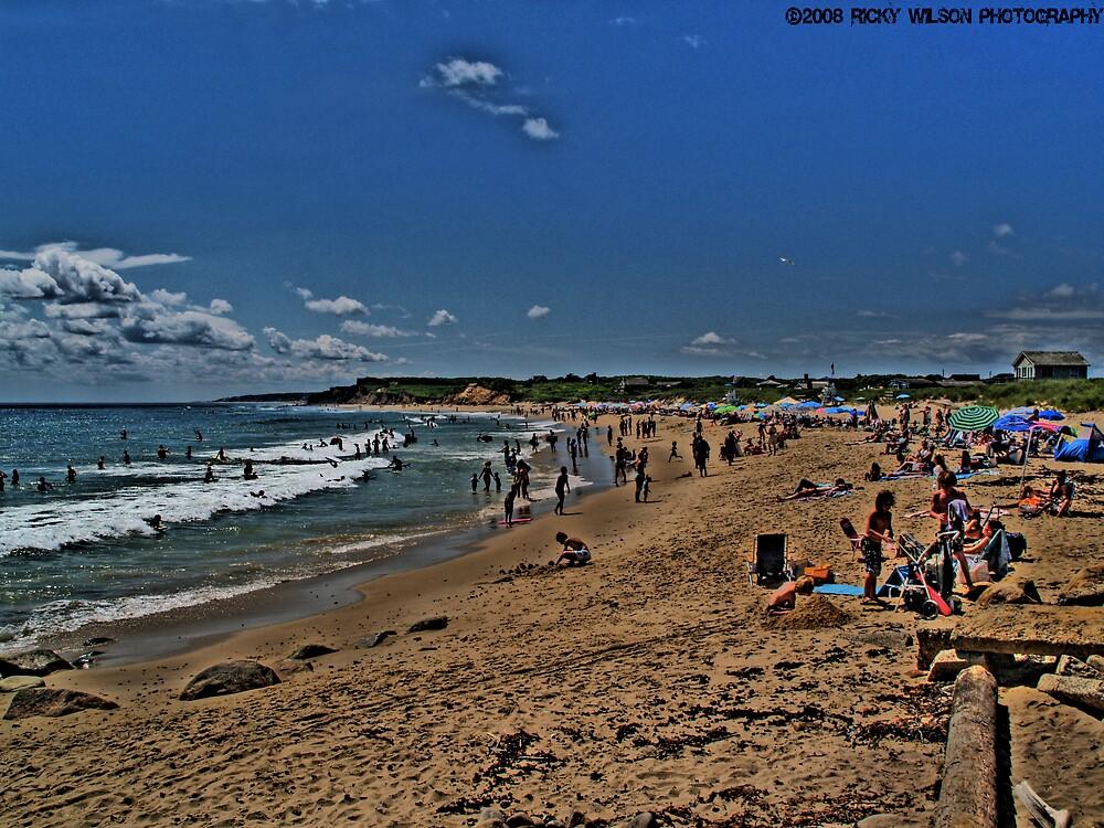Beach by Frederick Wilson