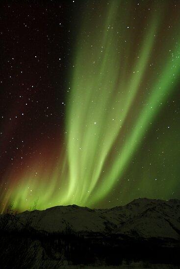 The Northern Light , Alaska USA.( Sold 8 image YAY )  by Nina  Matthews Photography