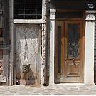 The Door Next Door by Millissa Grace