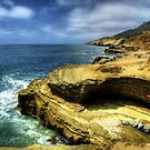 Ocean View by Hollie Cook