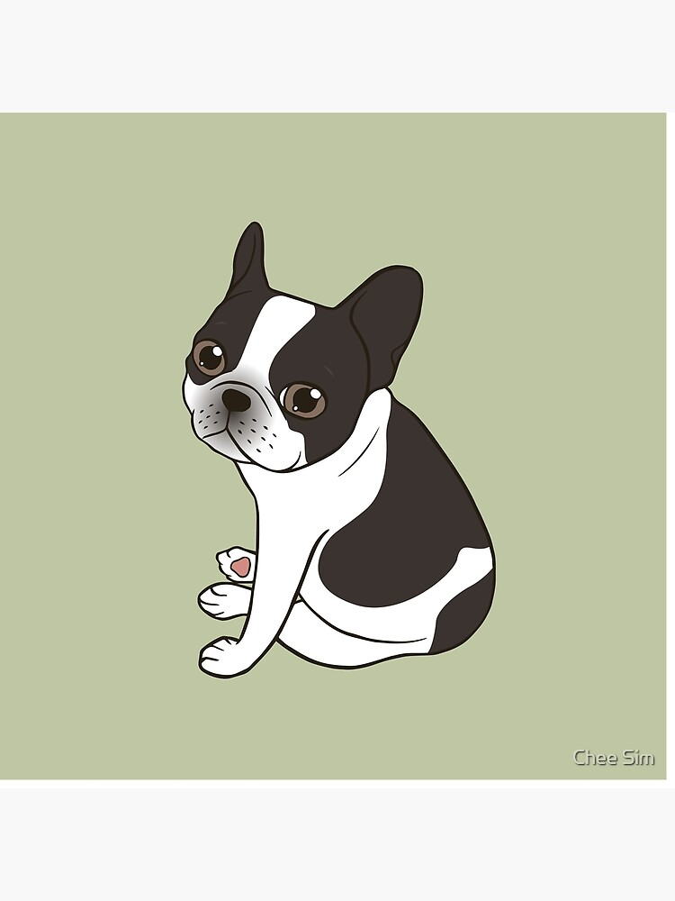 Say hello to the cute double hooded pied French Bulldog by cheesim
