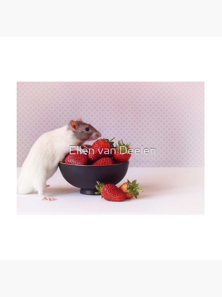 Snoozy loves strawberries by Ellen