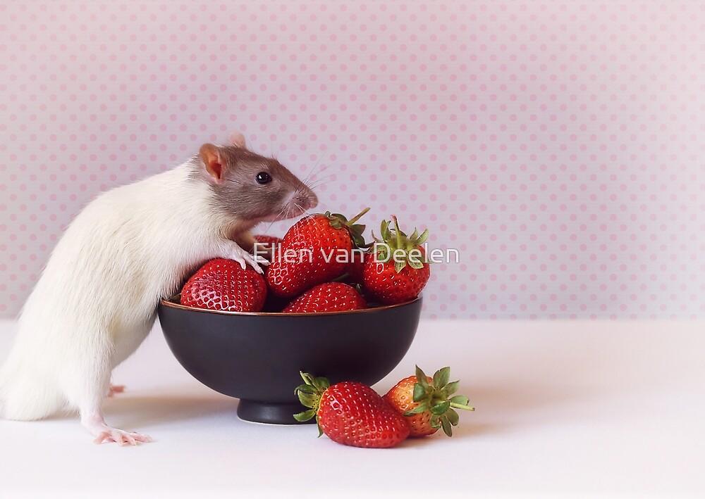 Snoozy loves strawberries by Ellen van Deelen