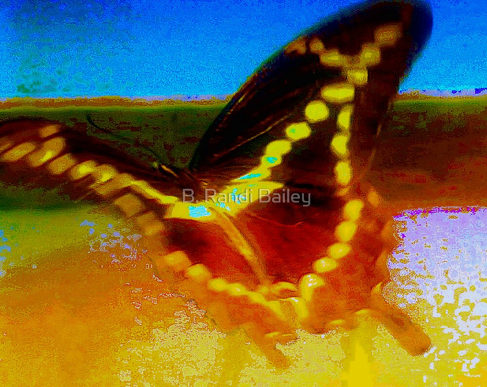 Giant swallowtail flying on waves of light by ♥⊱ B. Randi Bailey