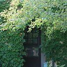 Forest Entry by FerrellCharles