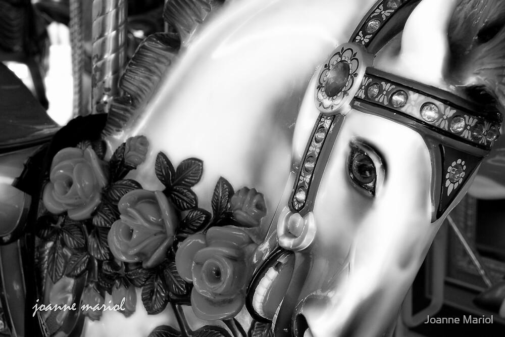 Carousel 6 by Joanne Mariol