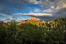 View from Creekside Restaurant - Sedona, AZ by eegibson