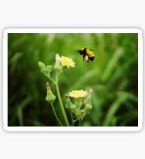 Buzzy Little Bee Sticker