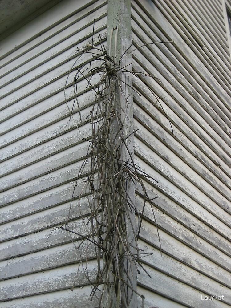 farmhouse cornerwalls in summer by Laurkat