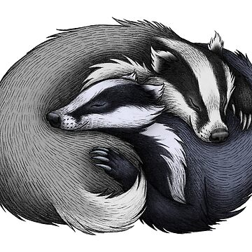Badger Couple de lyndseygreen
