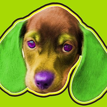 Dachshund Dog with Green Ears by pcisbs