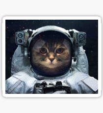 witty Cat astronaut  face Space Galaxy    Sticker
